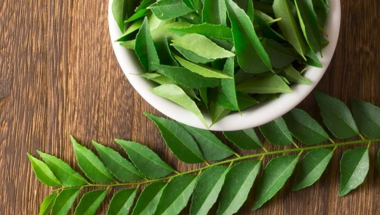 Monsoon 2021 Skincare Essentials: Add Neem Oil And Aloe Vera In Your Bathing Routine To Get Dewy Skin With Minimal Fuss