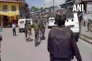 Jammu and Kashmir: Terrorists Hurl Grenade at Police Party in Pulwama, 3 Civilians Injured